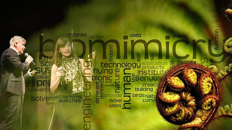 biomimic2